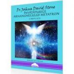 Învățăturile Arhanghelului Metatron - Dr. Joshua David Stone