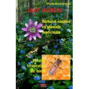 Barbatul sanatos cu plantele medicinale • Virtutile terapeutice ale mierii