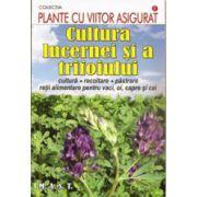 Cultura lucernei si a trifoiului