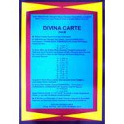 Divina Carte. Vol. 2