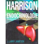 Harrison, Endocrinologie
