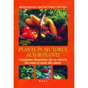 Plante in ajutorul altor plante. Tratamente fitosanitare bio cu extracte din urzici si multe alte plante