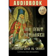 Am iubit patimirea (audiobook)