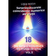 Surprinzatoarele coincidente numerice ale vietii (vol 3). Big Bang si intepatura pe frunza de lotus