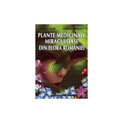 Plante medicinale miraculoase din flora Romaniei