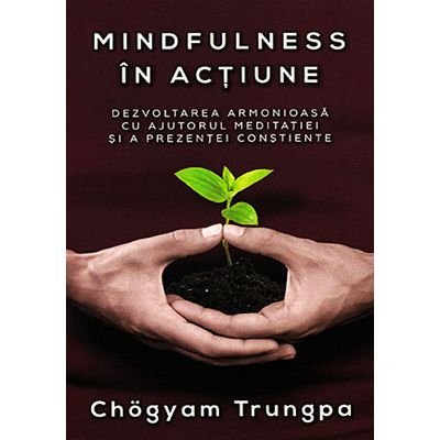 Mindfulness în actiune