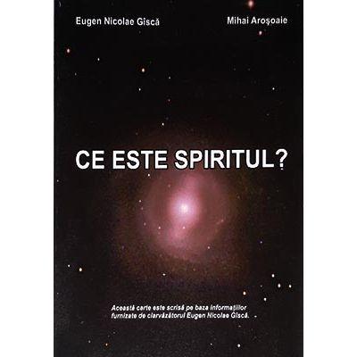Ce este spiritul? - Eugen Nicolae Gîscă, Mihai Aroşoaie